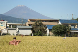 Mt_Fuji_in_Fall